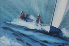 Speed by sail